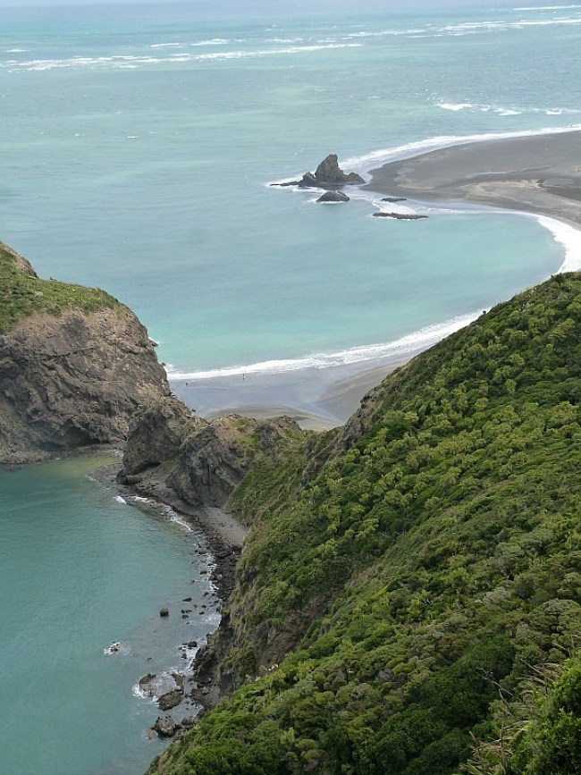 Hiking the Waitakere Ranges - one of the Best Days out in Auckland New Zealand