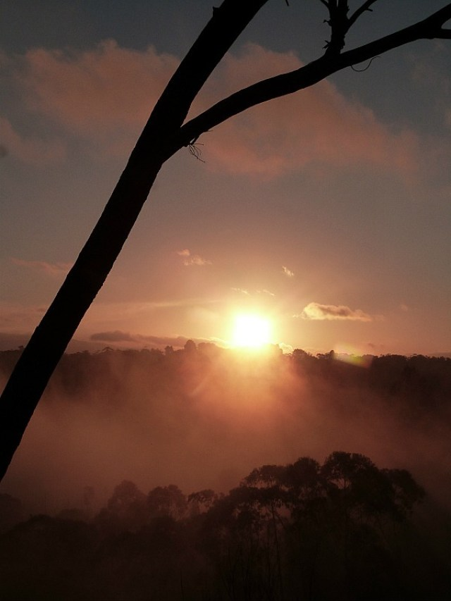 Sunset over the Jamison Valley in the Blue Mountains of Australia