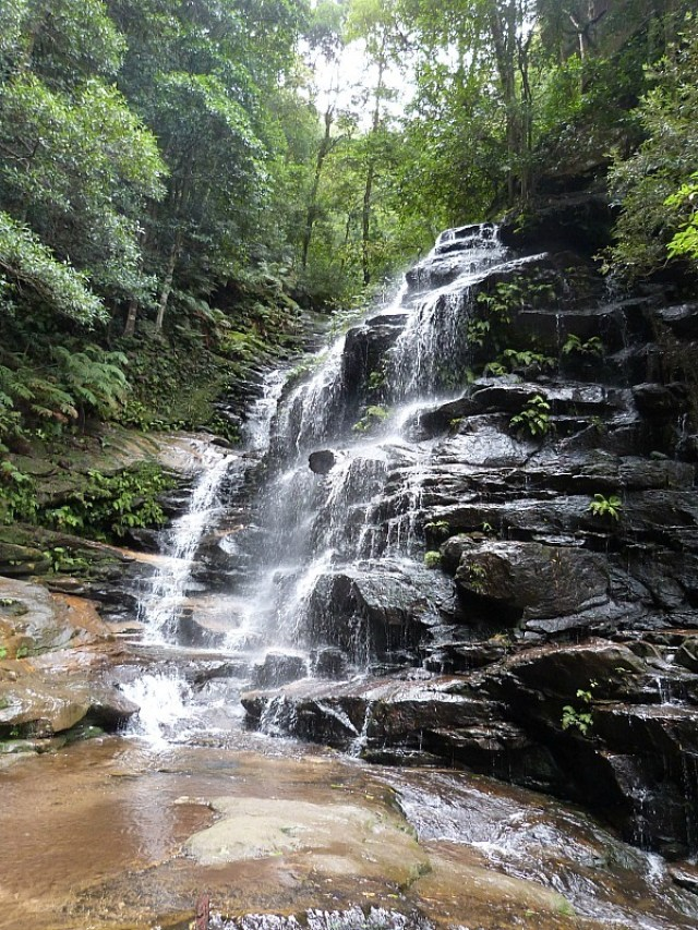 Hiking to Wentworth Falls in the Blue Mountains of Australia