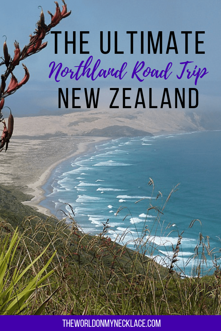 The Ultimate Northland Road Trip in New Zealand