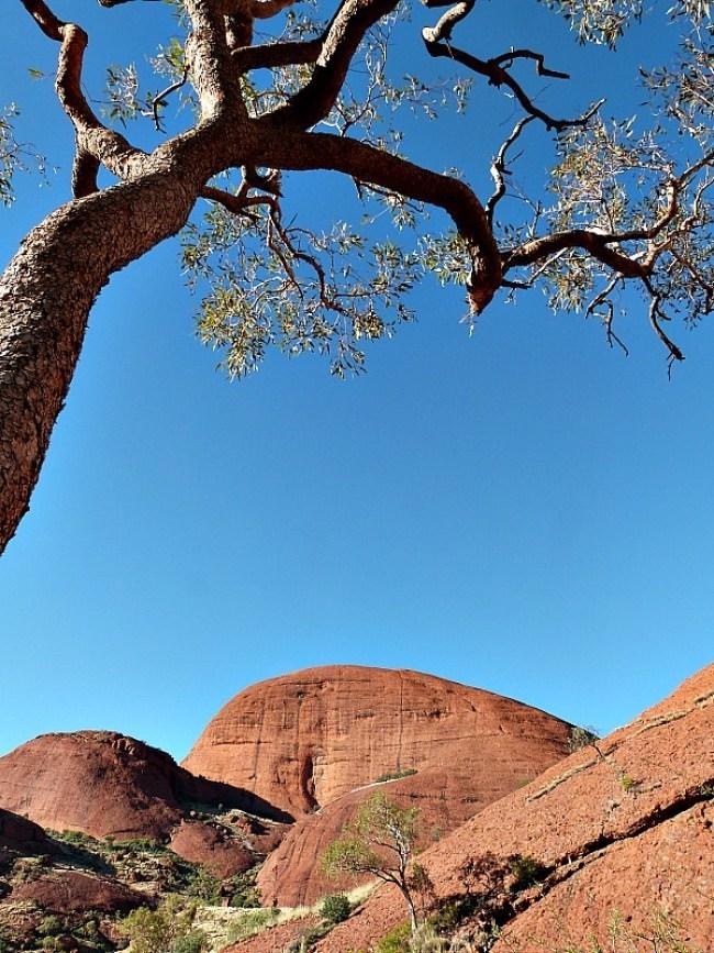 Views of beautiful Uluru in Australia