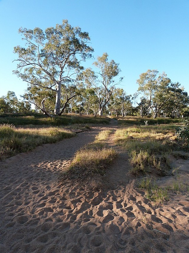 The dry Todd River in Alice Springs, Australia