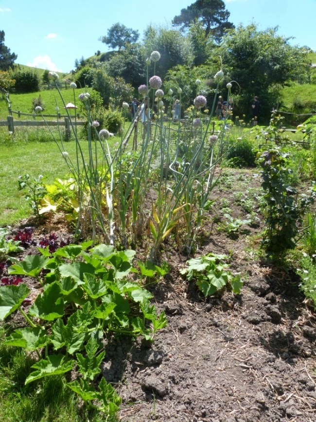 Gardens at Hobbiton New Zealand