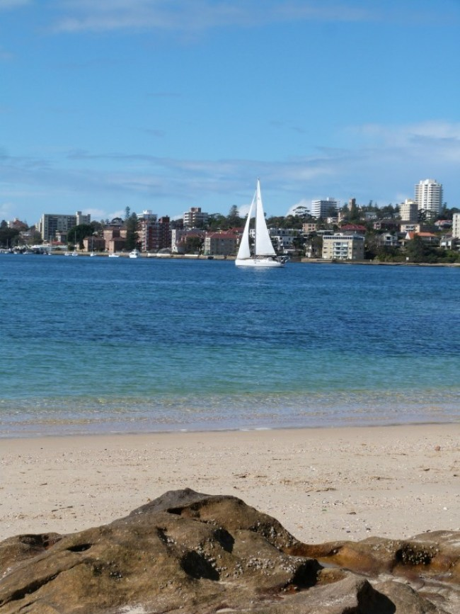Sail boats on the Manly to Spit walk