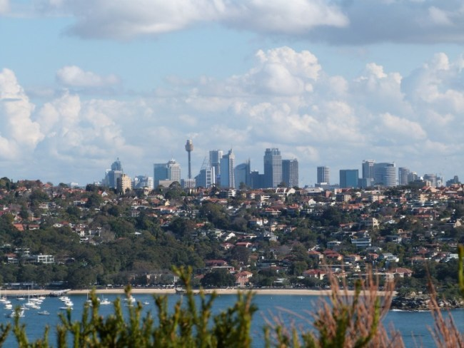 Great views of the city from the Manly to Spit walk