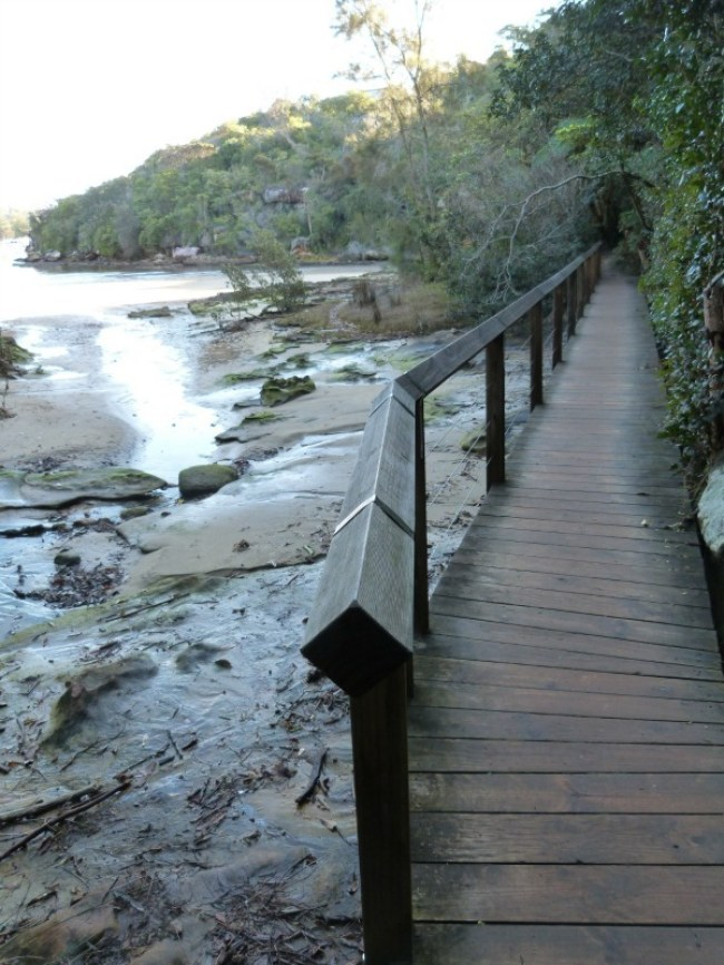 Boardwalk on the Manly to Spit walk