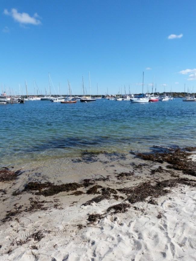 Beautiful beaches on Martha's Vineyard