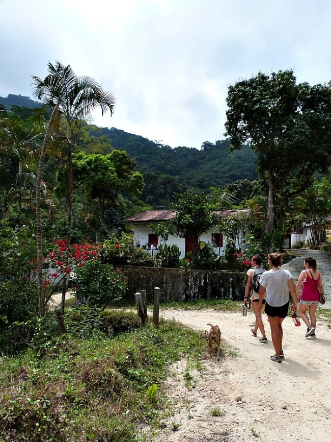 Hiking to coffee farms in Minca, Colombia - one of the 10 Best Offbeat Places in South America