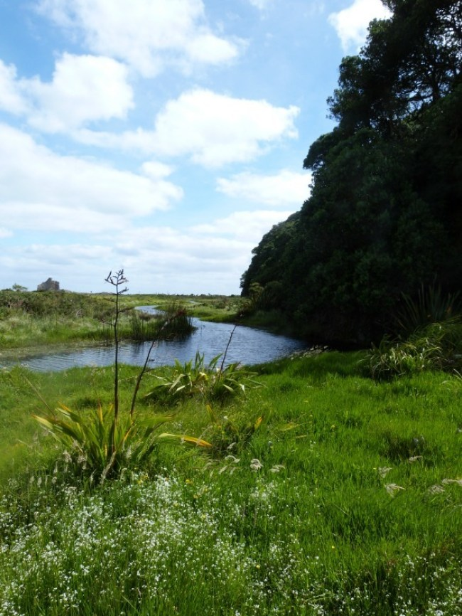Coastal section of the Hillary Trail in the Waitakere Ranges of Auckland, New Zealand
