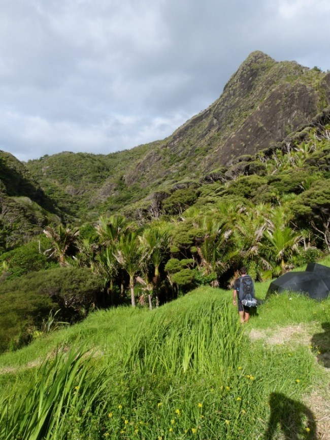 Getting to the Pararaha Valley on the Hillary Trail in New Zealand