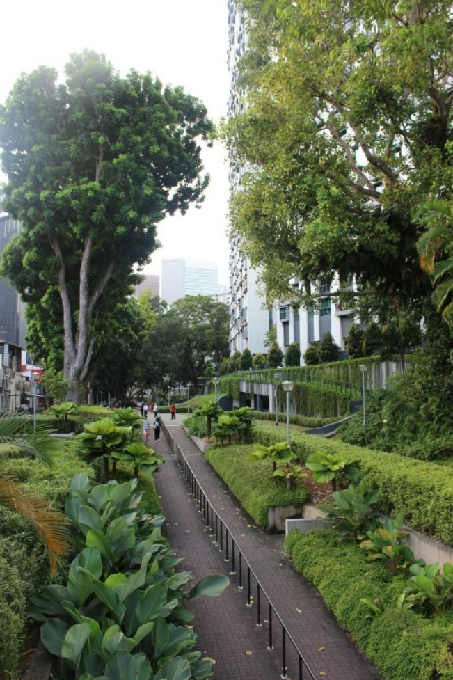 Walking the green belt in Chinatown during our 24 hours in Singapore