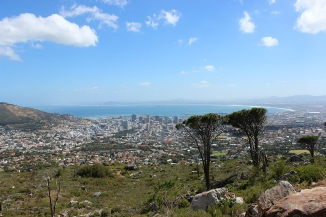 Views from the start of one of the best Table Mountain hikes in Cape Town: Platteklip Gorge