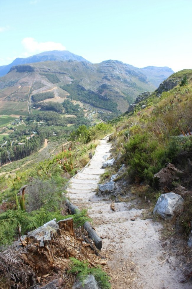 Hiking above Constantia - one of the best places to visit in Cape Town