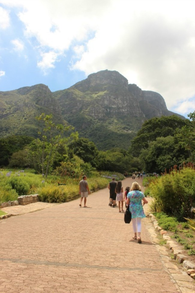 Exploring Kirstenbosch Gardens in Cape Town - a must for your Cape Town itinerary