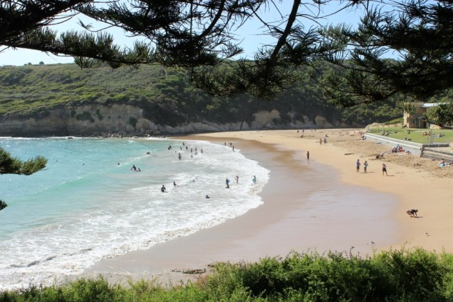Beach on the Great Ocean Road