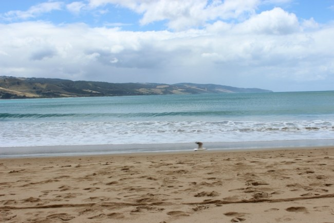 Apollo Bay on Australia's Great Ocean Road