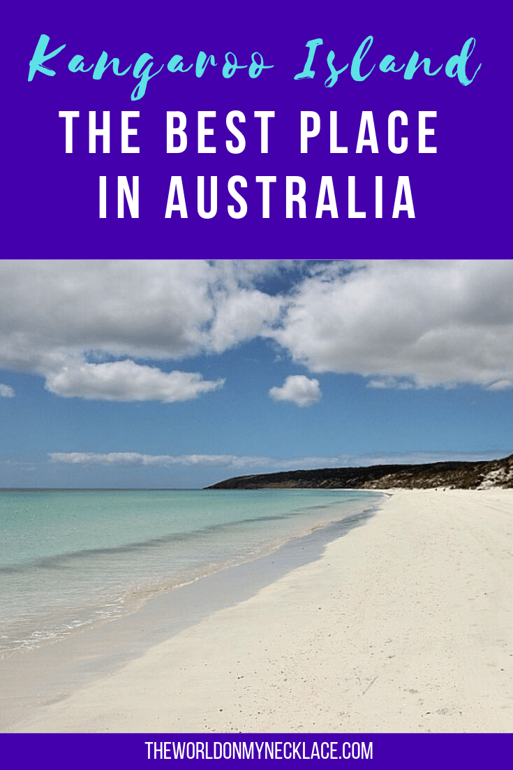 Kangaroo Island: The Best Place in Australia