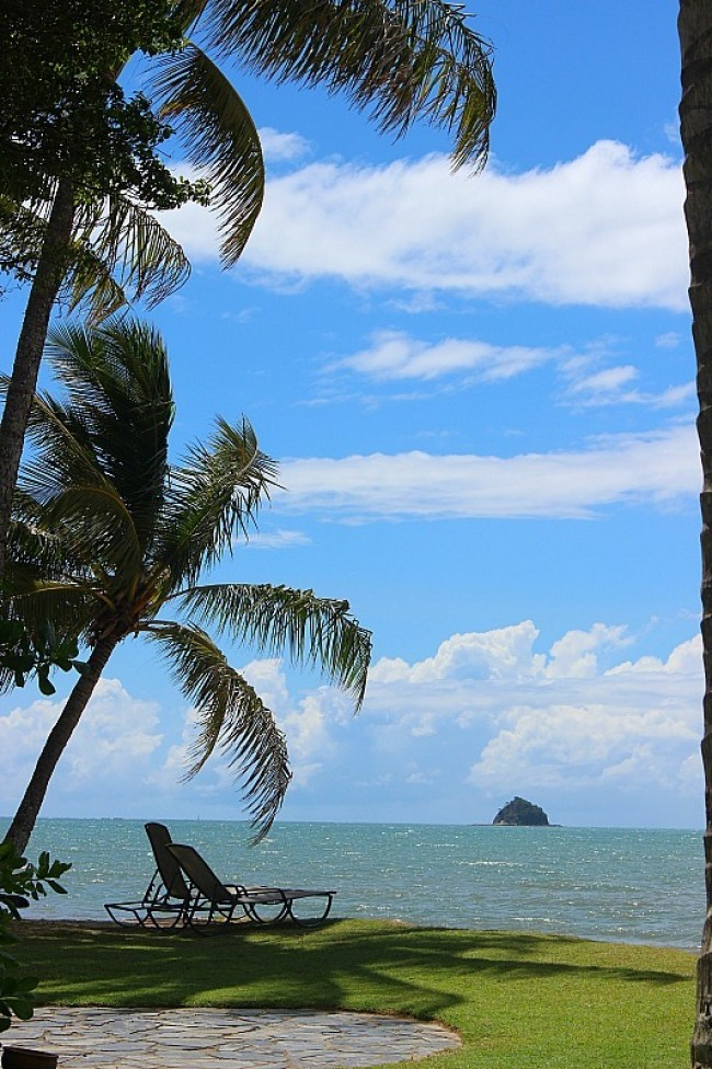 Beautiful Palm Cove in North Queensland