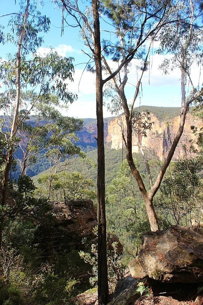 Blue Mountains view in Australia