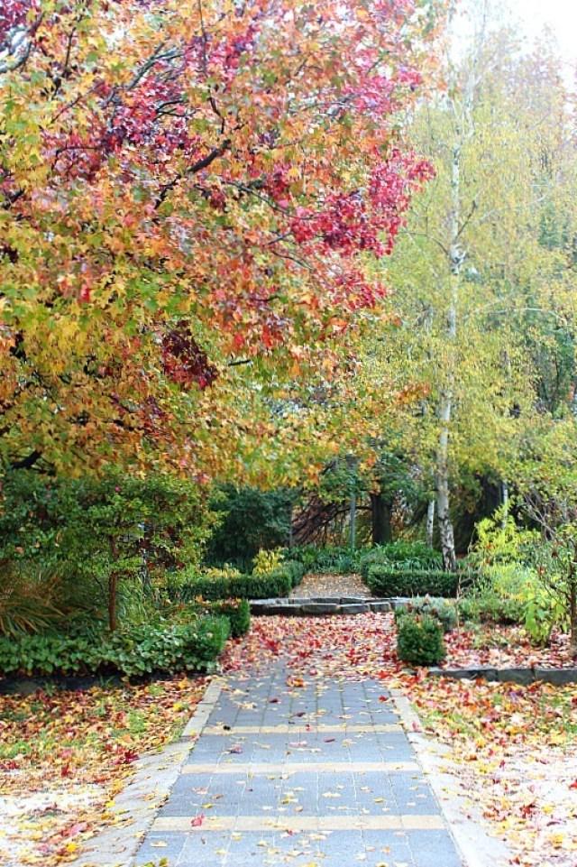 Orange Botanical Gardens in Orange NSW