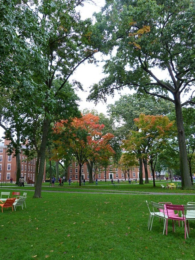 Visiting Harvard University in fall