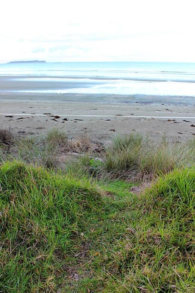 Wenderholm Beach in Wenderholm Regional Park in North Auckland