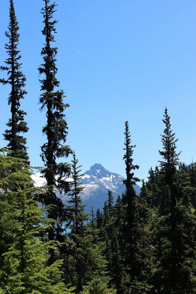 Black Tusk in the distance from the Garibaldi Lake hike