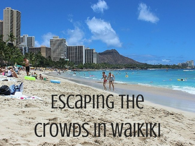 Escaping the crowds in Waikiki Hawaii