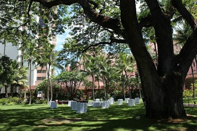 Royal Hawaiian Hotel grounds in Waikiki