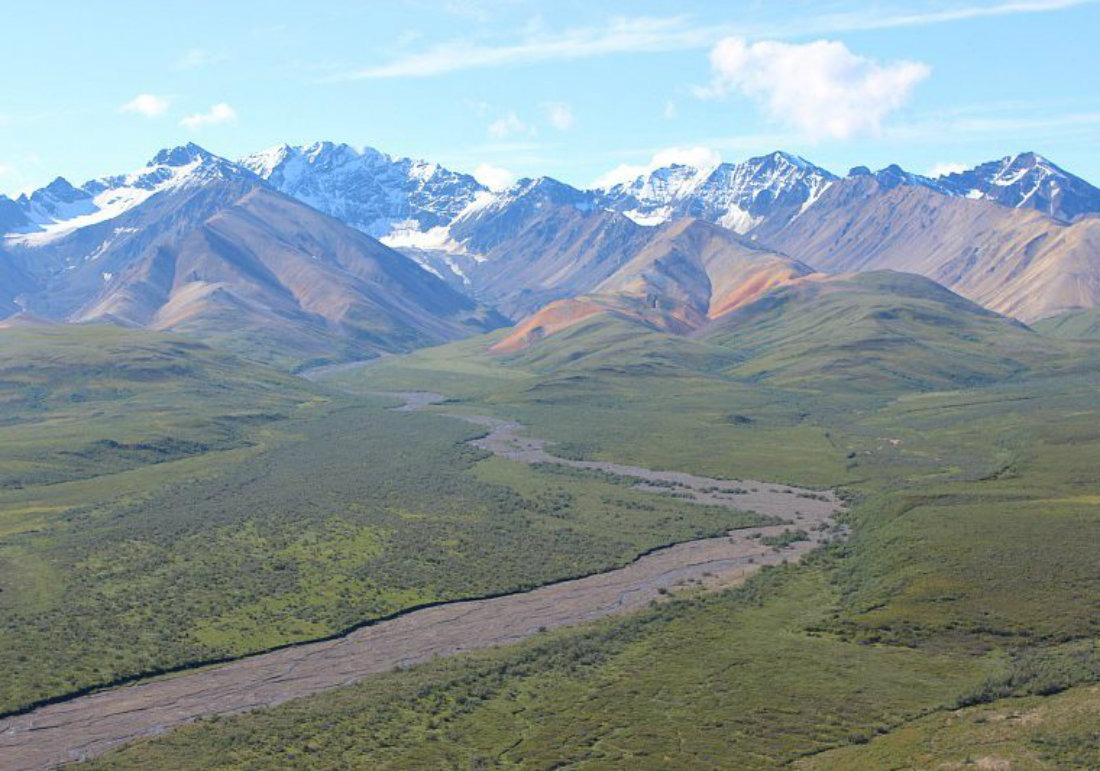 The Ultimate Denali National Park Budget Travel Guide