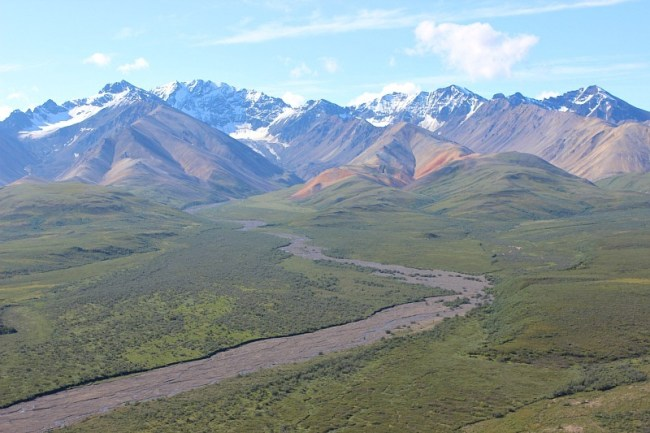 River valley in Denali National Park