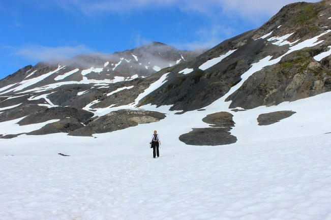 Snowy fields on the Harding Icefield trail in Alaska