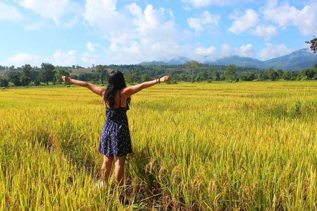 Enjoying a rice paddy in Pai on my birthday during month five of digital nomad life