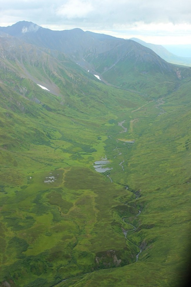 Verdant Valleys around Talkeetna on a Denali Flight Tour