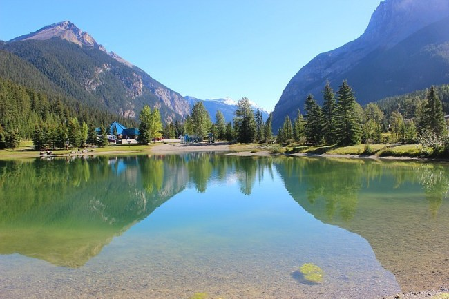 The pond in Field BC where the locals swim