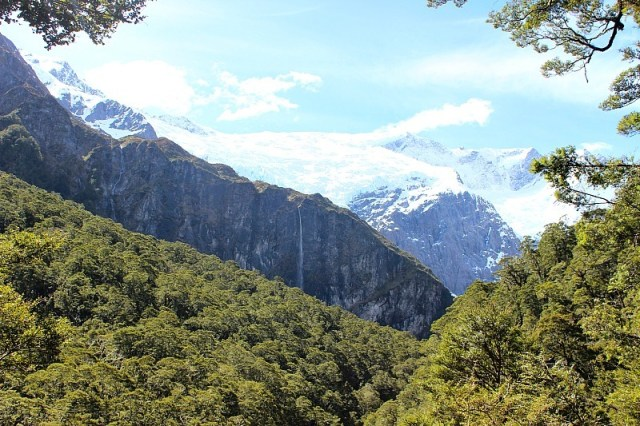 Glaciers in the distance in Mount Aspiring National Park
