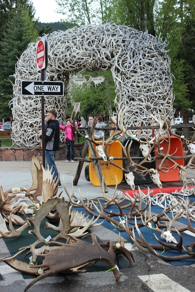 Antler sale in Jackson Hole during month 11 of digital nomad life