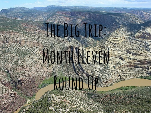 Month Eleven Round Up of my Digital Nomad Life