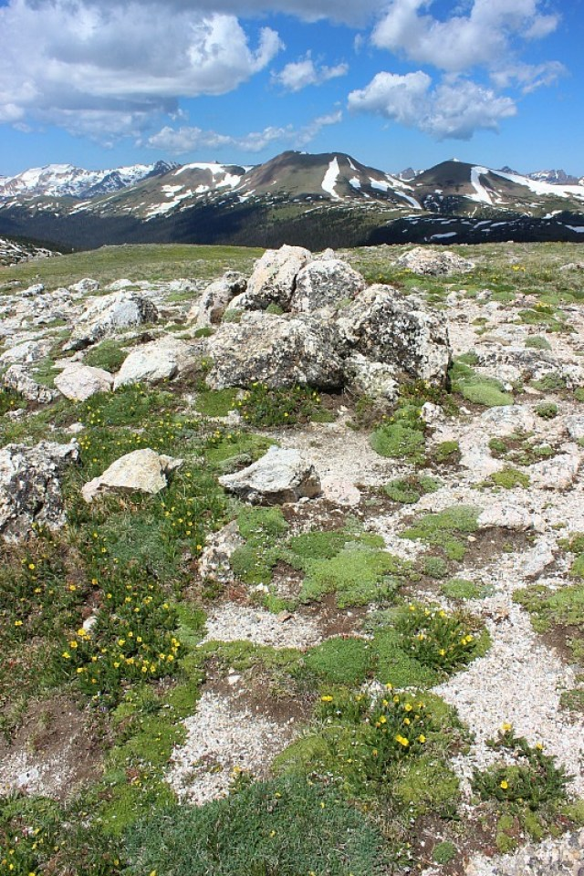Hiking in Rocky Mountain National Park during month 13 of Digital Nomad Life
