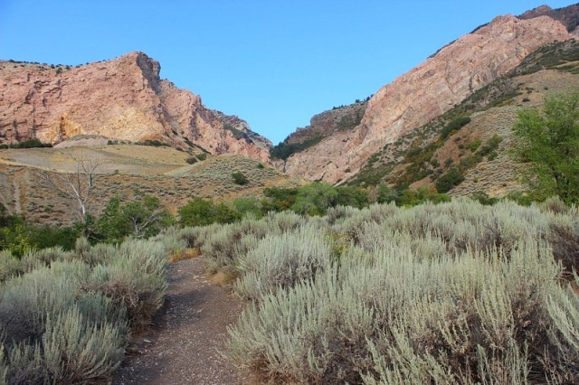 Willard Canyon in Utah visited during month 14 of digital nomad life - The World on my Necklace