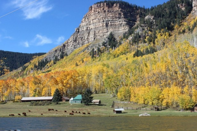 fall-colours-near-ouray during month 16 of digital nomad life