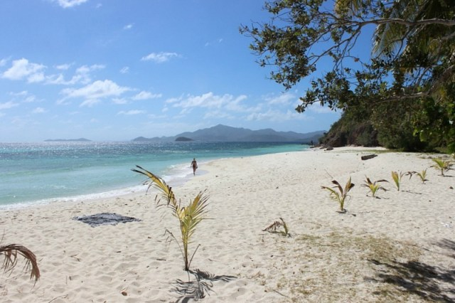 malcapuya-island - day trip from Coron
