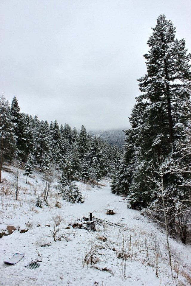 november-snow-in-green-mountain-falls during month 17 of digital nomad life