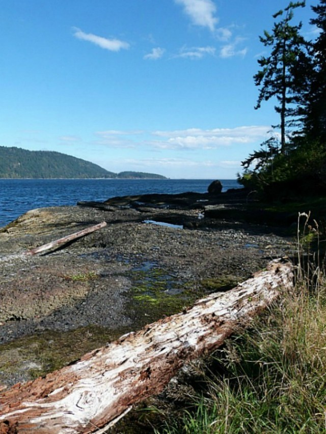 Denman Island in Canada - one of the 10 best offbeat islands to visit
