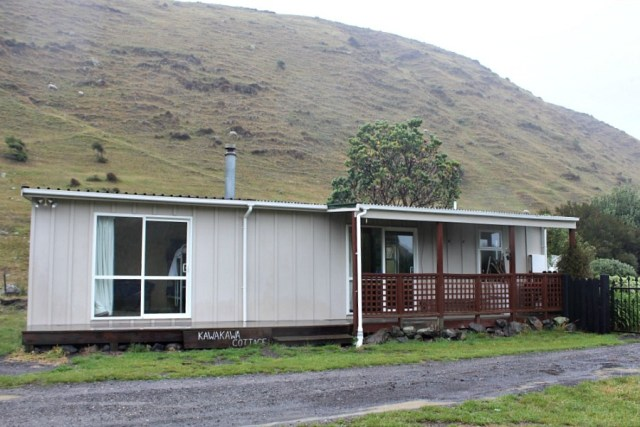 Glamping near Cape Palliser New Zealand during month twenty one of digital nomad life