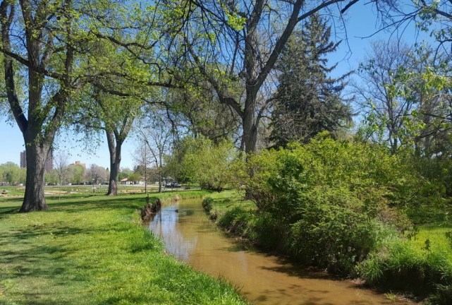 Housesitting in Wash Park Denver during month twenty three of digital nomad life