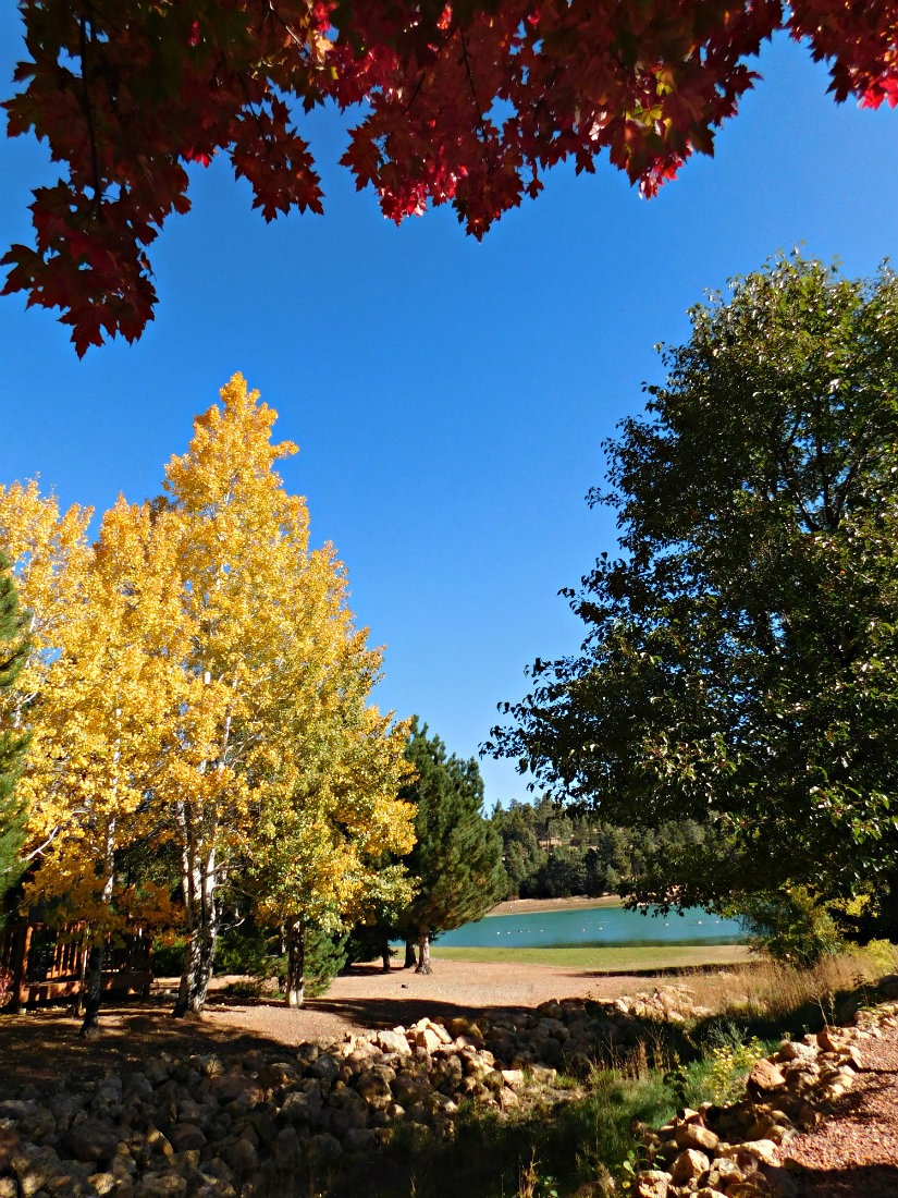 Enjoying the fall colors in Flagstaff during Month Twenty Eight of Digital Nomad Life