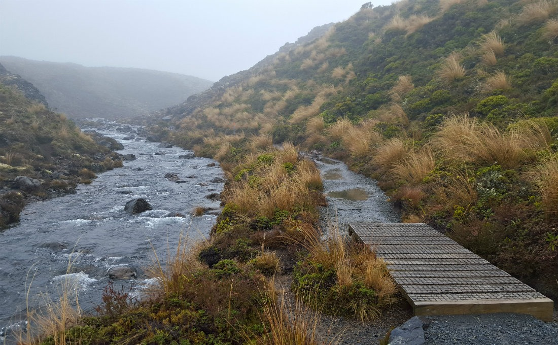 Hiking by the river on day one of the Tongariro Northern Circuit
