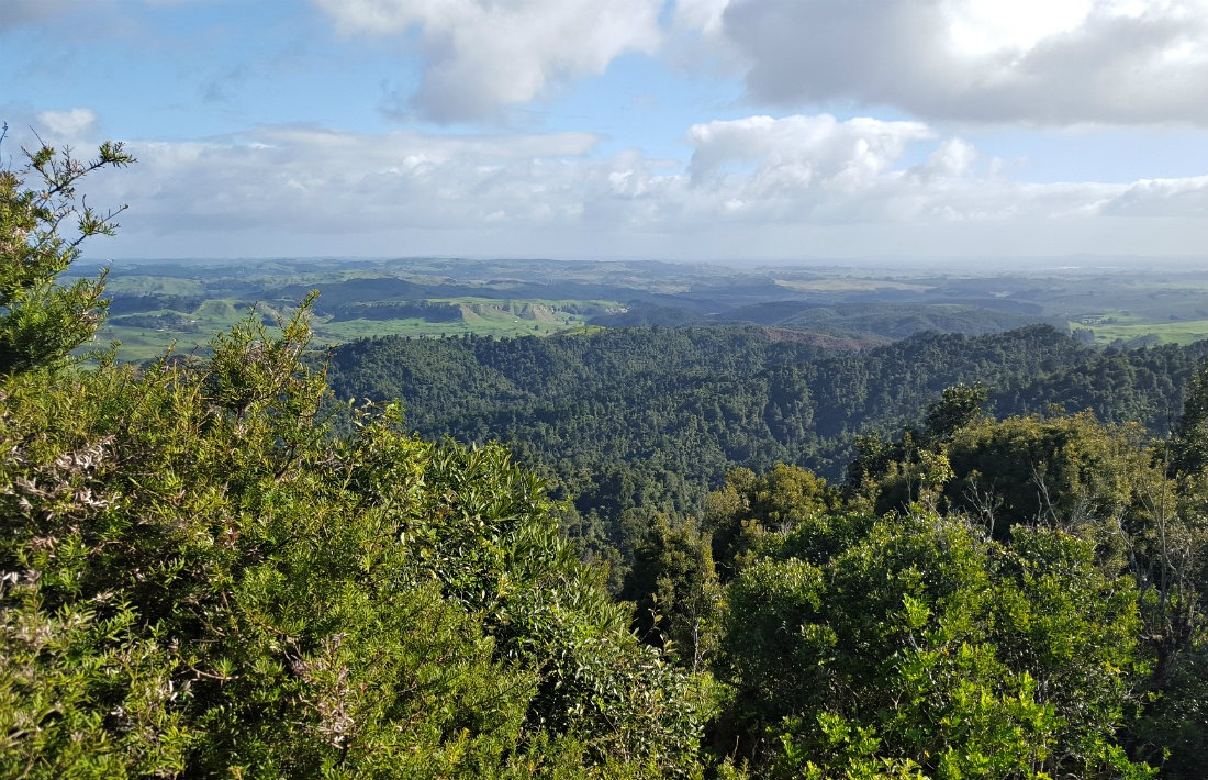 View from the Hakarimata Summit hike in Ngaruawahia
