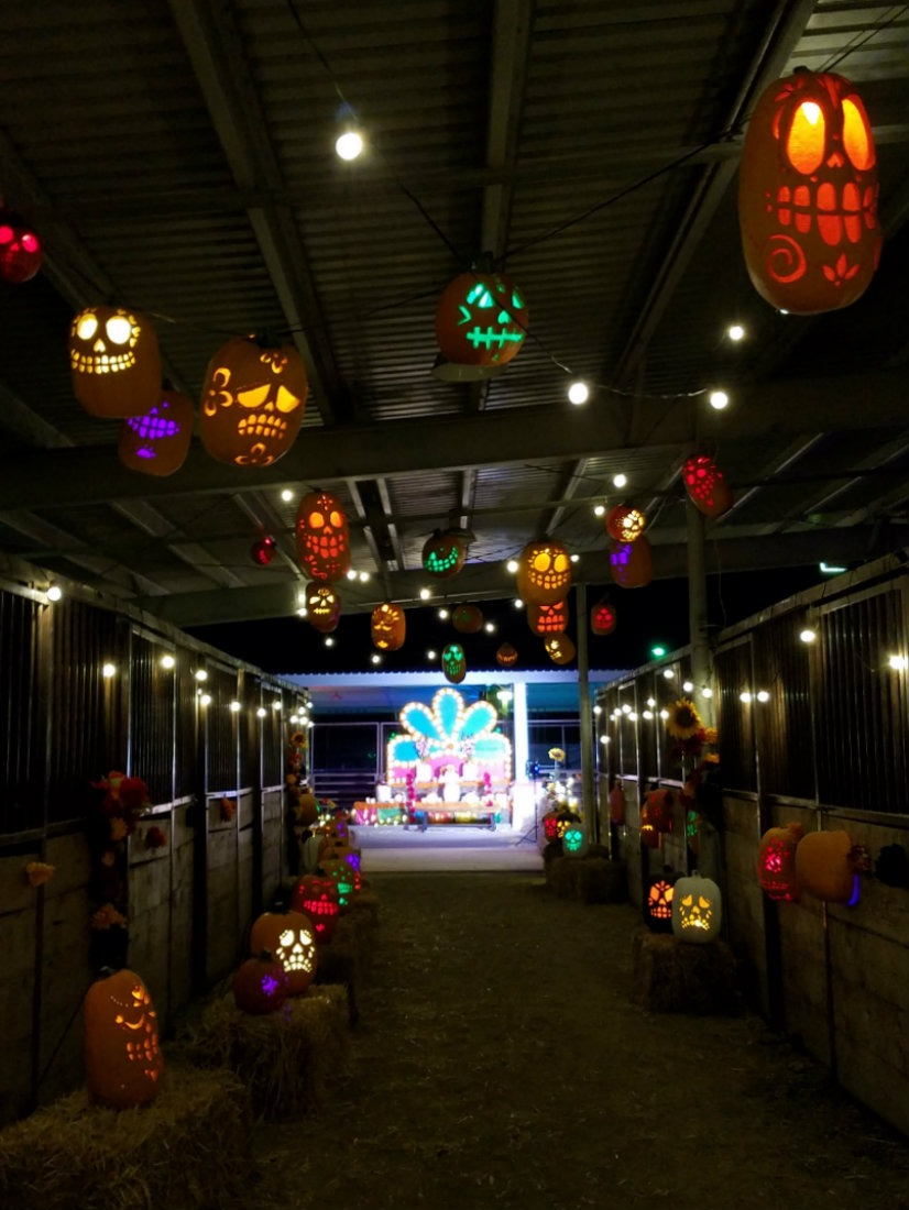 Dia de los Muertos land at Pumpkin Nights in Denver